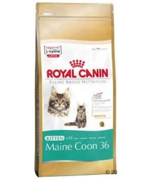Для котят Мейн–кун: 4–15 мес. (Kitten Мaine Coon) 543100/ 543010
