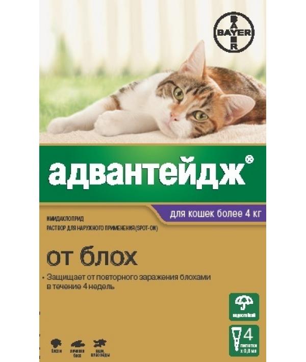 Адвантейдж Капли д/кошек от 4кг от блох, 4пипетки – 13274