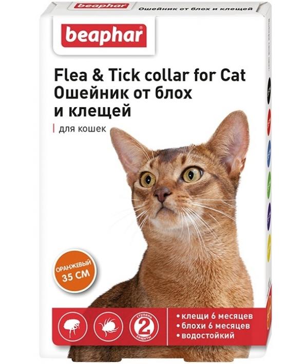 Ошейник Оранжевый от блох и клещей для кошек