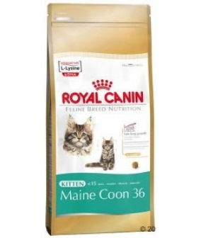 Для котят Мейн–кун: 4–15 мес. (Kitten Мaine Coon) 543020/ 543120