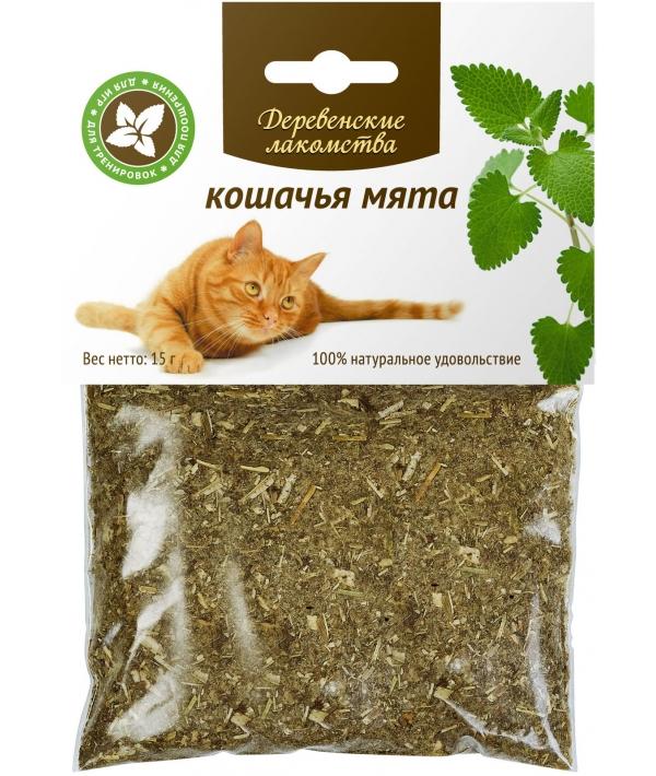 Мята кошачья
