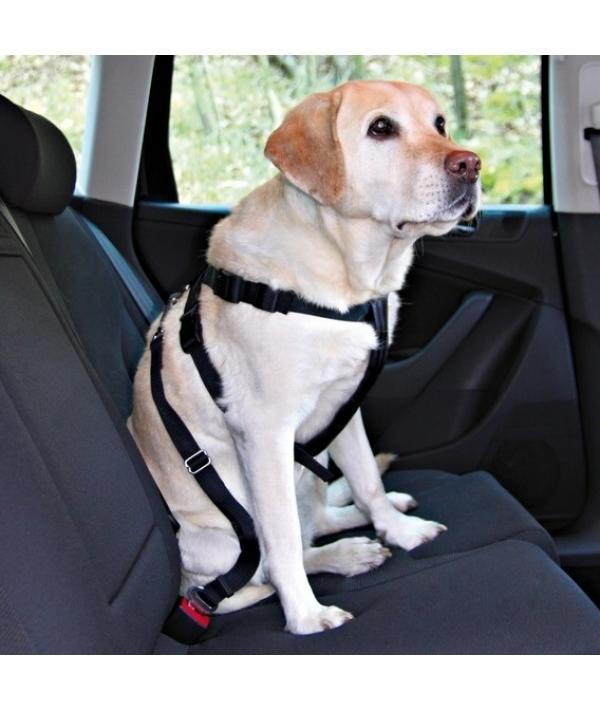 Ремень безопасности для собак со шлейкой, 20 – 50 см