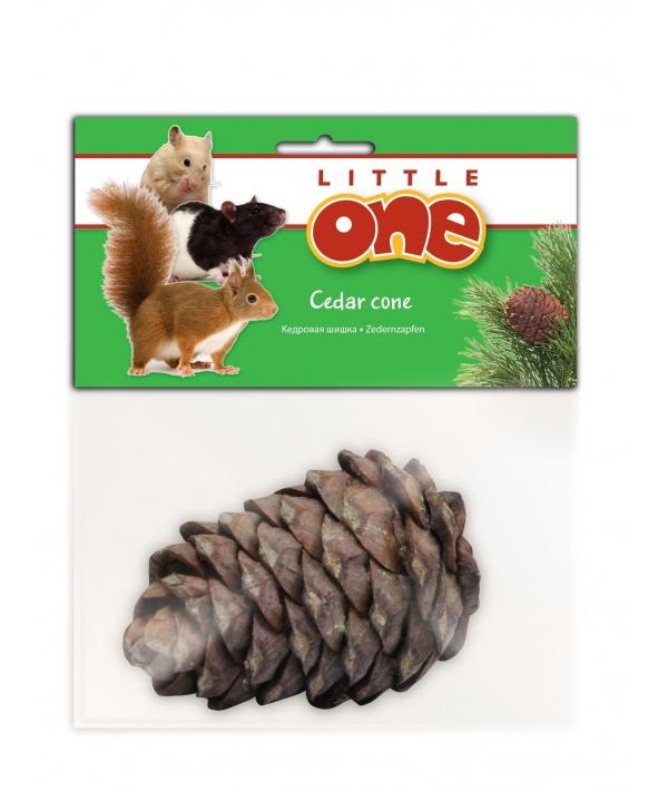 Кедровая шишка – лакомство – игрушка для всех видов грызунов