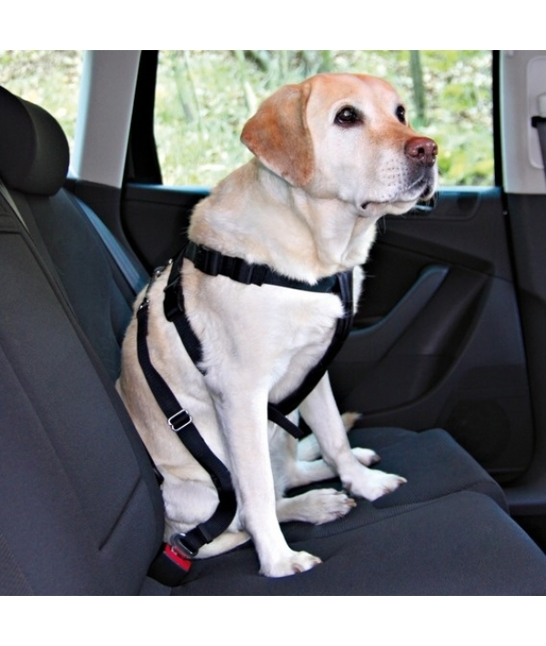 Ремень безопасности для собак со шлейкой, 50 – 70 см