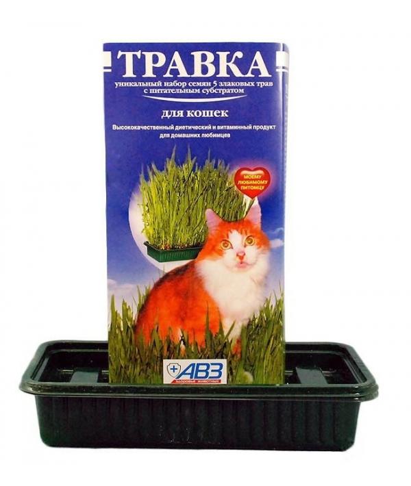 Травка для кошек (лоток с питательным субстратом) в красочной упаковке АВ204