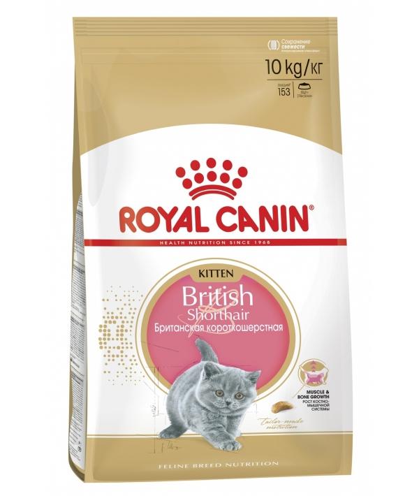 Для котят Британск. короткошерстн.: 4–12 мес. (Kitten British Shorthair) 541100/ 541010