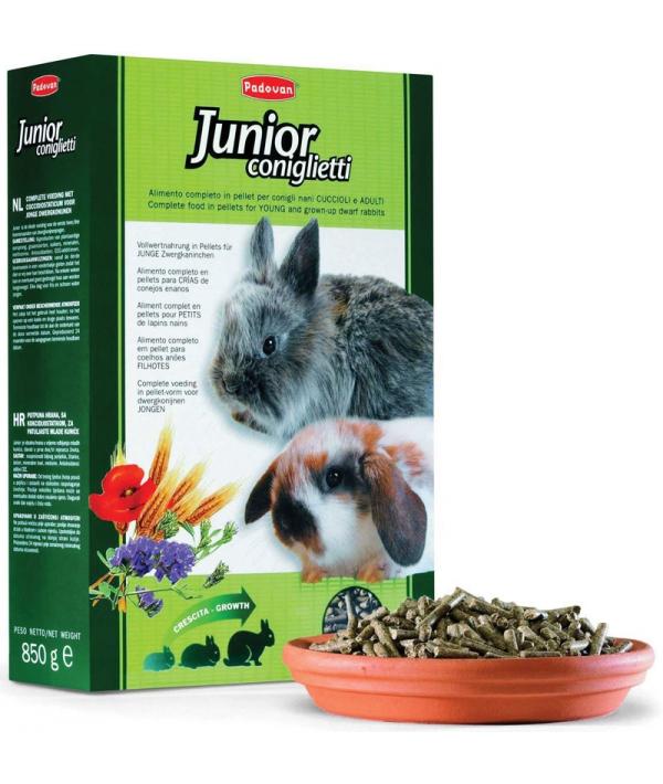 Корм для крольчат (Grandmix Junior Coniglietti) PP00386