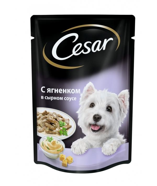 Паучи для собак с ягненком в сырном соусе 10156796