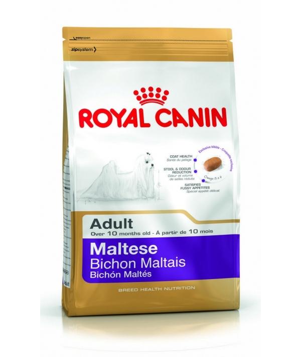 Для взрослой Мальтийской болонки: с 10 мес. (Maltese 24) 199015